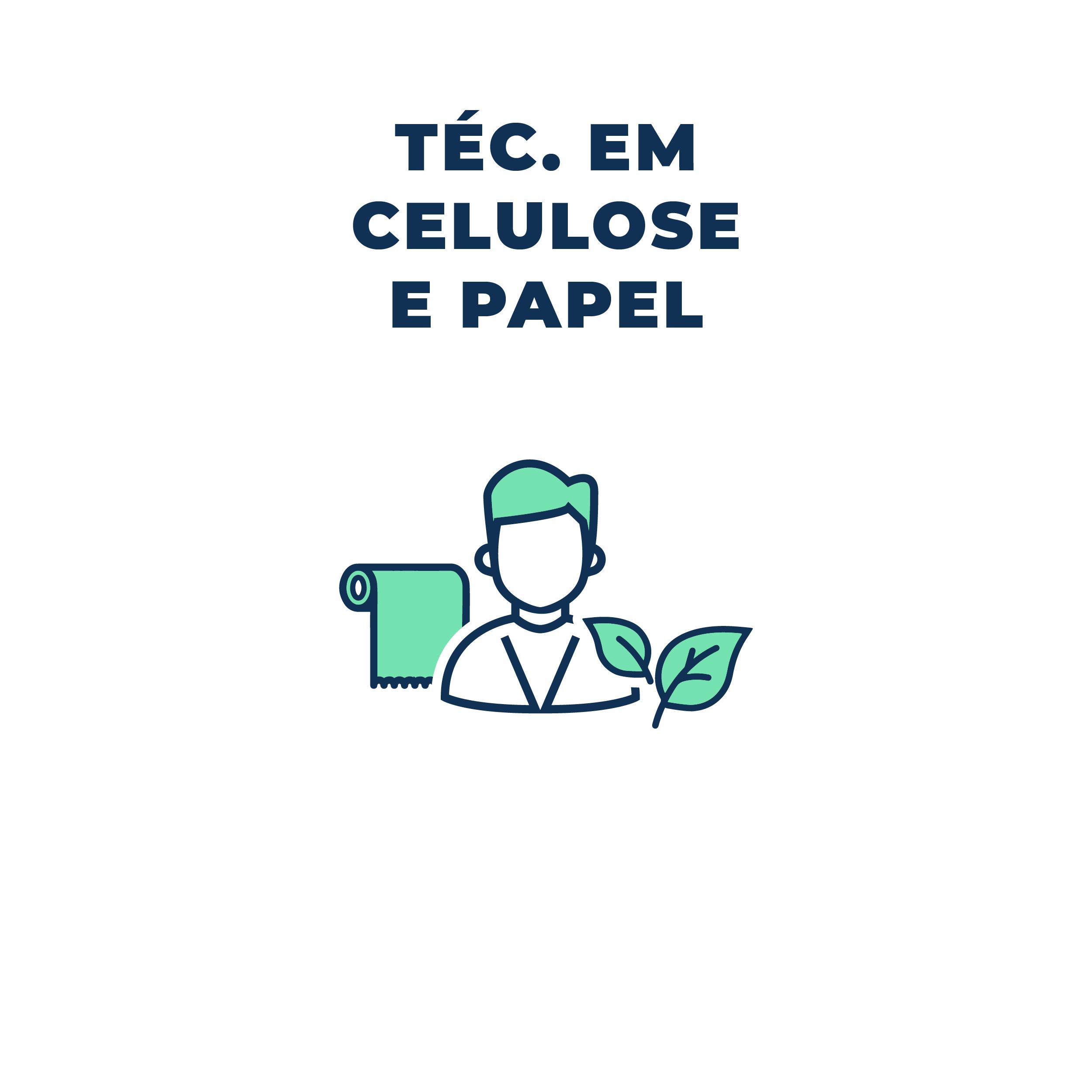 celulose e papel